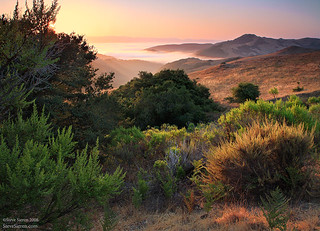 Los Osos Valley & Central Coast | by Steve Sieren Photography