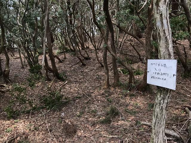 野登山 林道 つつじの小径入口