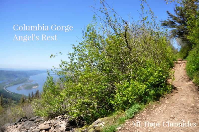 Angel's Rest Hike @ Mt. Hope Chronicles