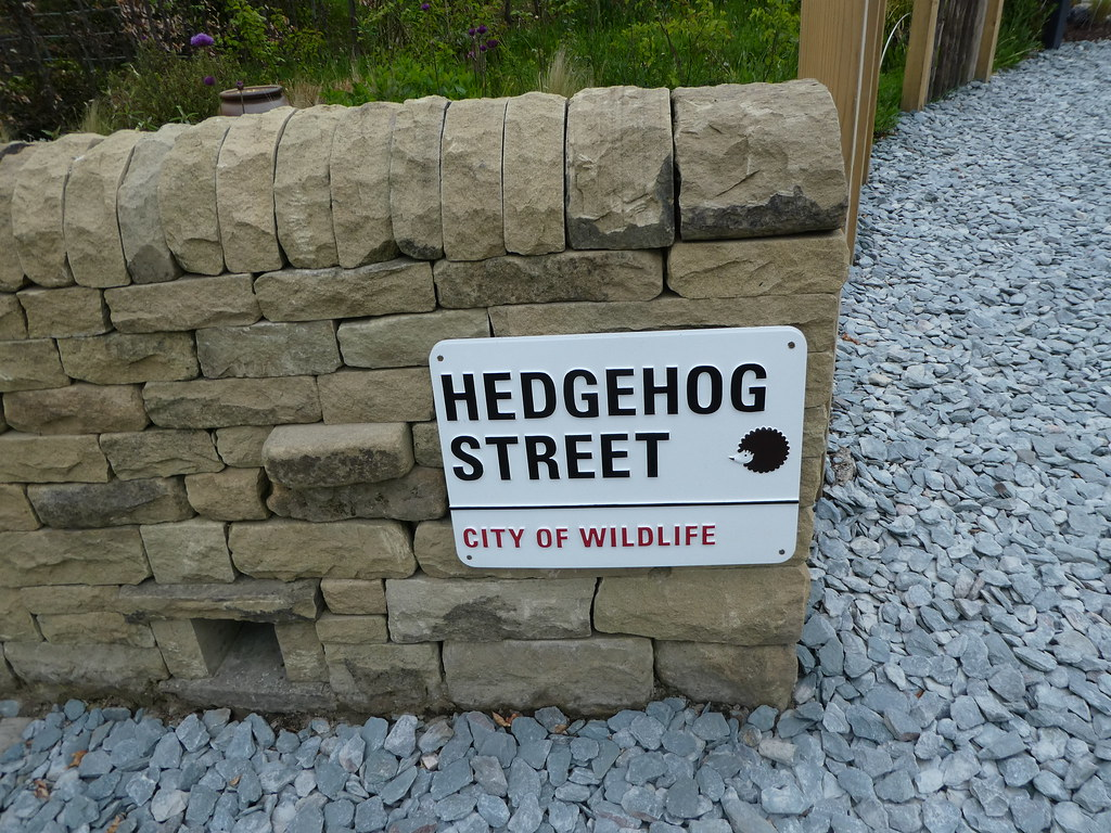 Hedgehog Street, Harlow Carr Garden