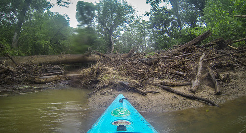 Long Cane Creek with Lowcountry Unfiltered-36