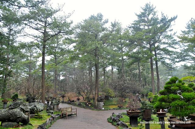 Hallim Park Jeju Island