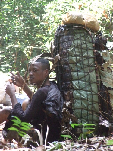 carrying bushmeat load from west to east