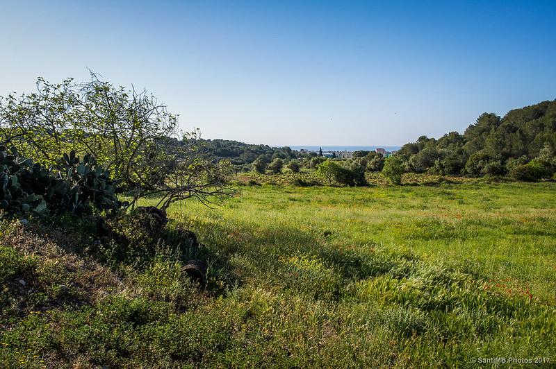 Vista de Cunit desde cerca de Cal Pla