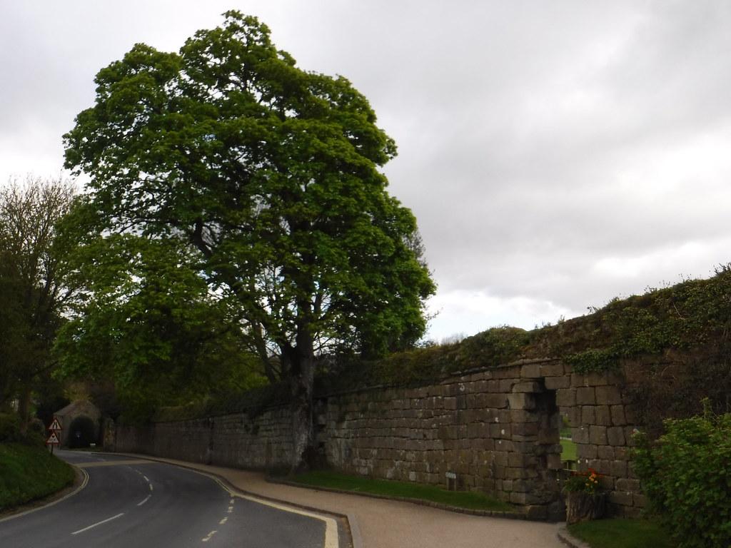 Bolton Abbey 2