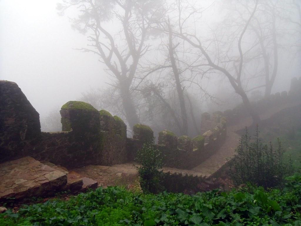 Hillside trail, Sintra