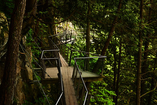Capilano Suspension Bridge Park 7 | by C.M. Keiner