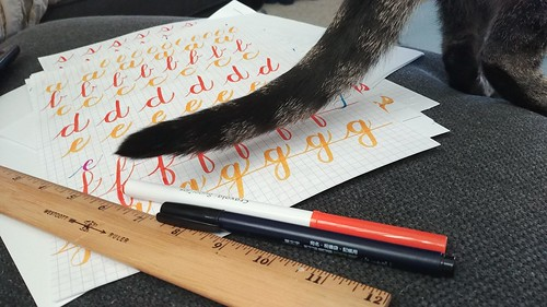 Calligraphy when your cat likes paper