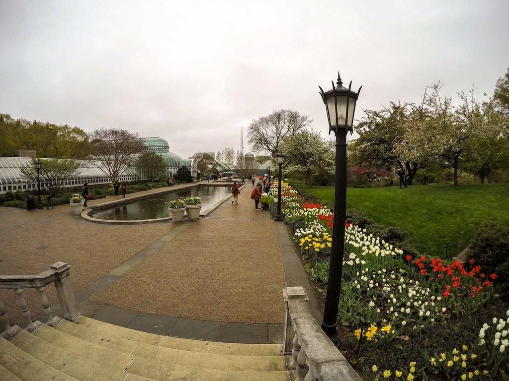 Brooklyn Botanic Garden pond area