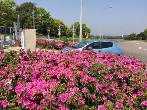 宮崎自動車道 山之口SA(上り)で急速充電中の日産リーフ