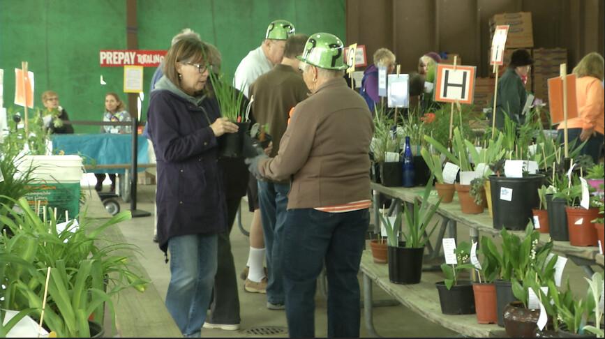 Meridian Garden Club Host Annual Plant Sale