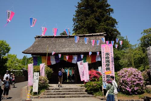Shiofune Kannon temple Azalea Festival 2017 01