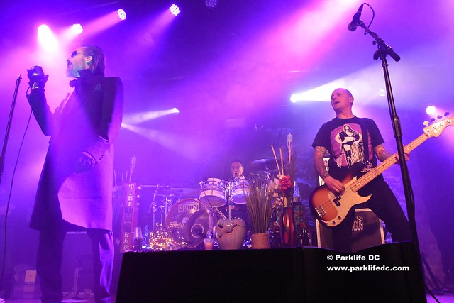 The Damned 04