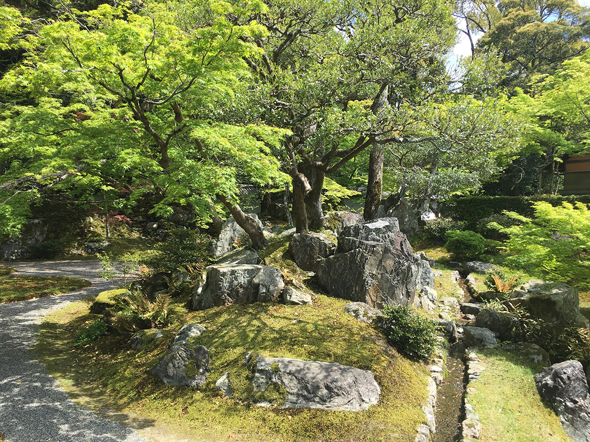 本堂横の庭園