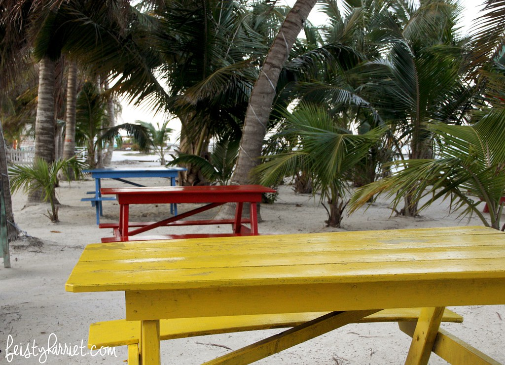 Caye Caulker Belize 22_feistyharriet_April 2017