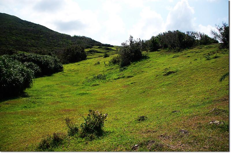 鼻頭山大草原 1
