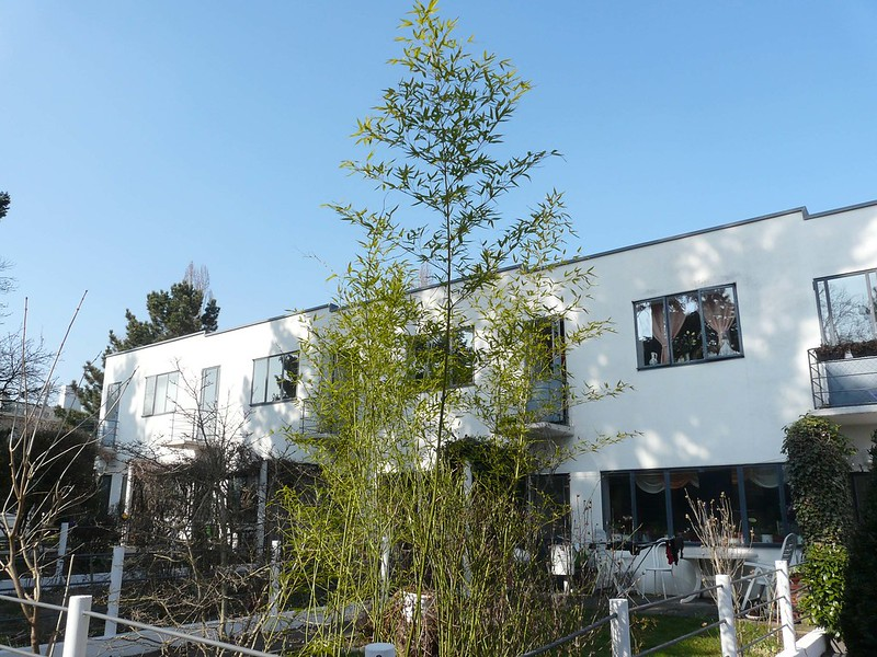 Weissenhof Siedlung