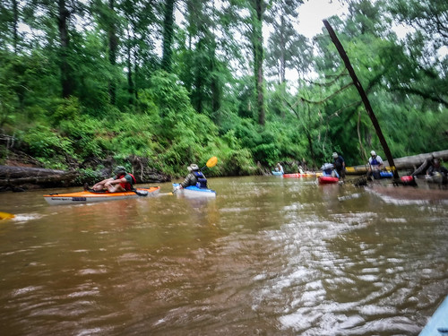 Long Cane Creek with Lowcountry Unfiltered-109