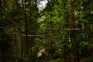 Capilano Suspension Bridge Park 14 | by C.M. Keiner