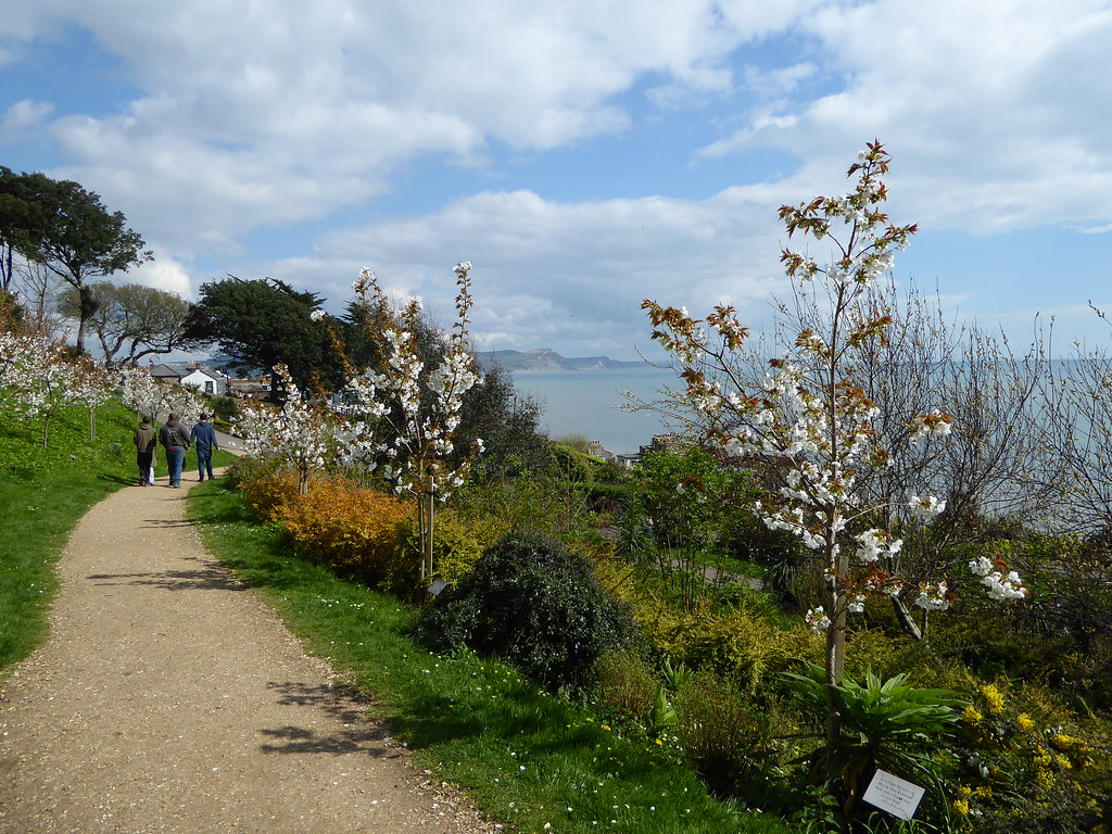 Lyme Regis Gardens