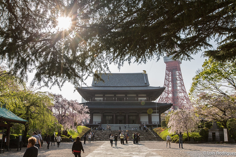 Zojiji-Shiba-Park-75