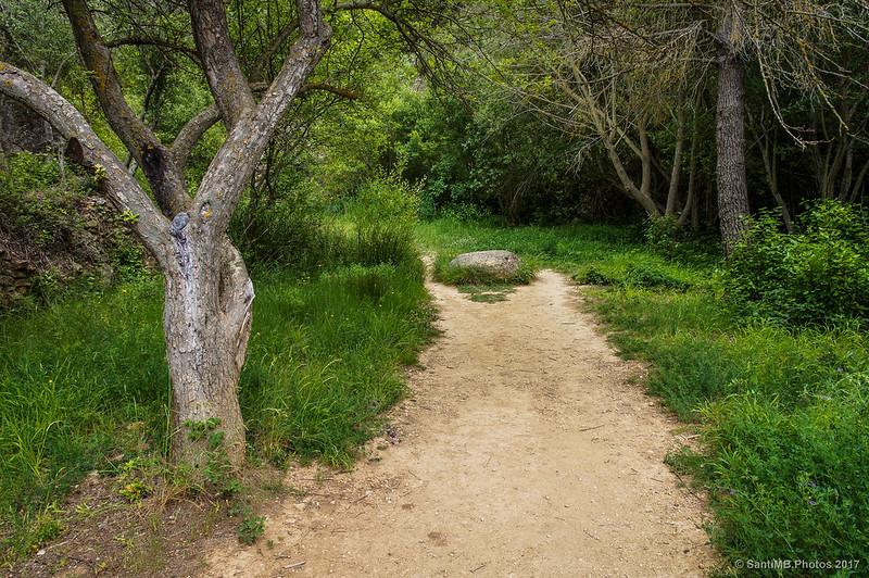 Camino de las Cadolles Fondes