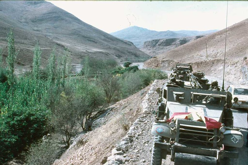 M3-halftrack-golan-1973-f-1