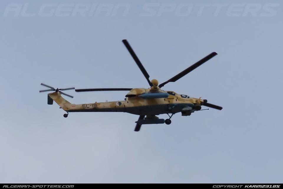 Armée Algérienne (ANP) - Tome XIV 34501505481_20f835753f_o