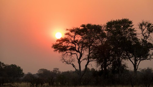 holiday-packages-hotels-travel-agency-african-sunset | by holidaypackagesworldwide