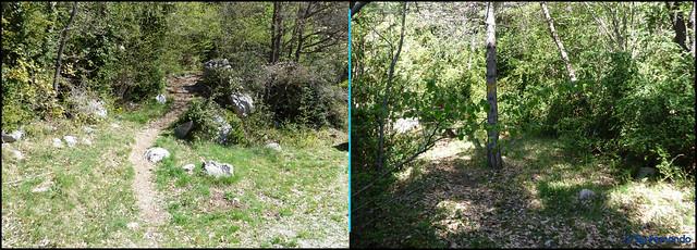 Berguedà - Zona Fígols -03- Grau de La Mola - 04- Sendero acceso