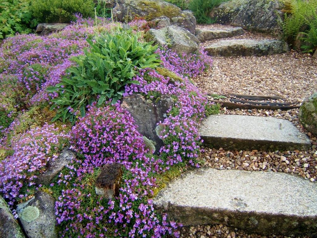 L\'allée fleurie | Jardin Jean Marie Pelt | MAPNANCY | Flickr