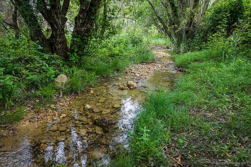 Riera afluente del Montsant