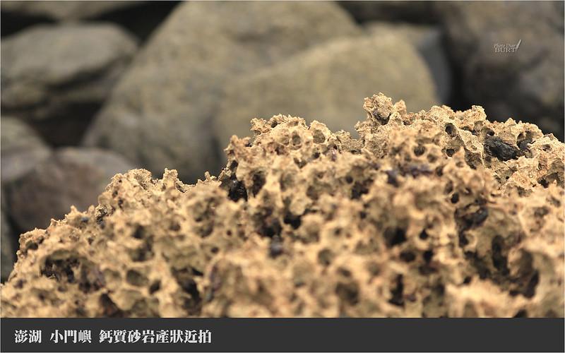 小門嶼_鈣質砂岩產狀近拍