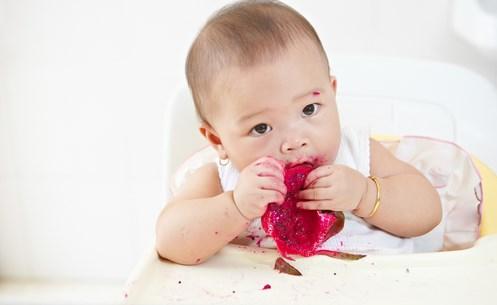 Amankah Biji Buah Naga Untuk Bayi