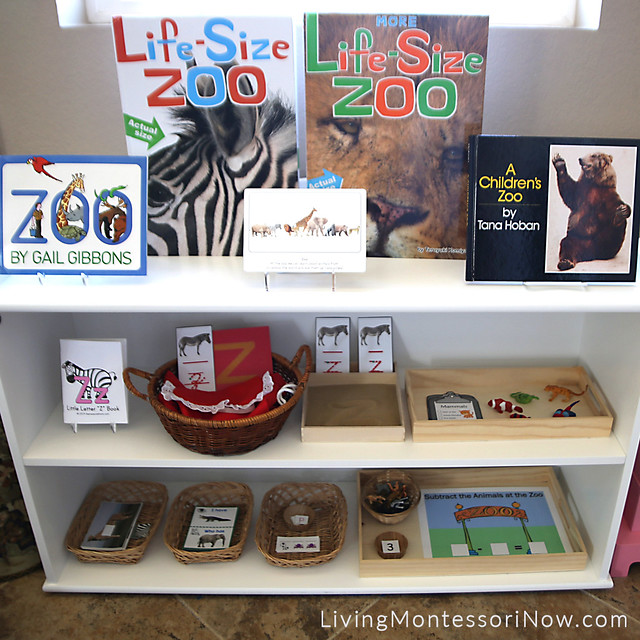 Shelves with Zoo-Themed Activities