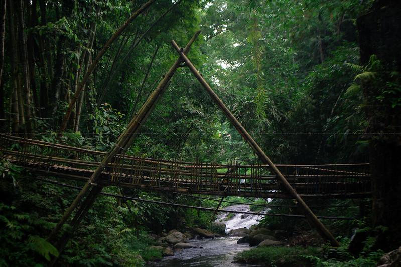 jembatan bambu coban ciblungan