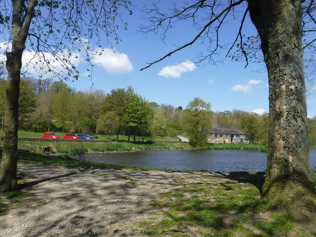 Ball Grove Park 1