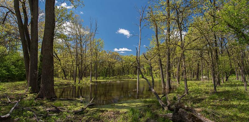 Kettle Pond