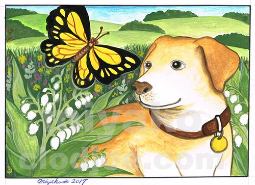 Dog with a butterfly and Lily Of The Valley