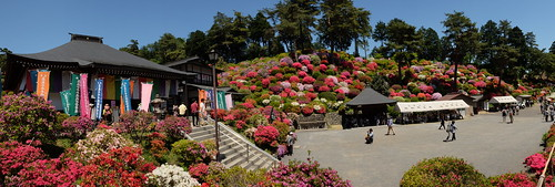Shiofune Kannon temple Azalea Festival 2017 55