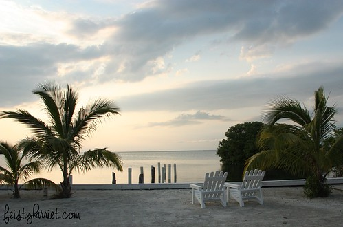 Caye Caulker Belize 1_feistyharriet_April 2017 | by FeistyHarriet