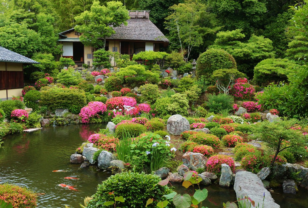 Azalea Garden / Kyoto Toji- in temple 京都 等持院 | A Tiny Tea ho ...