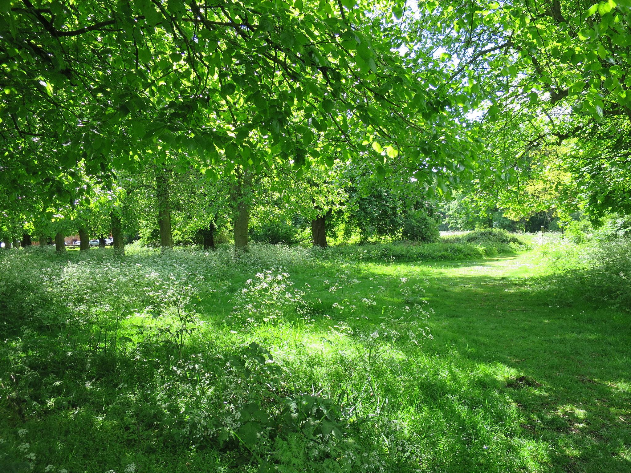 Coombe Country Park, Hello Im Clo, Culture Blogger 6