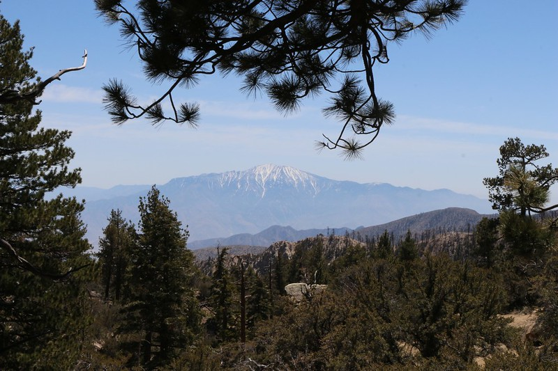 We get a view south from the PCT toward snow-capped San Jacinto Peak