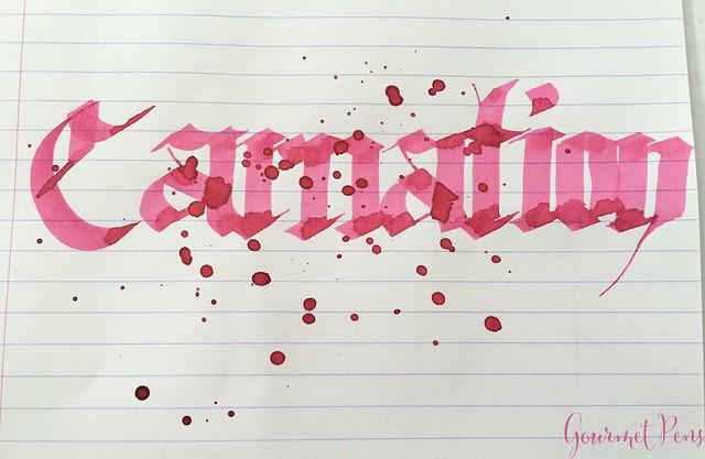Ink Shot Review Diamine Flowers Carnation @AppelboomLaren 6