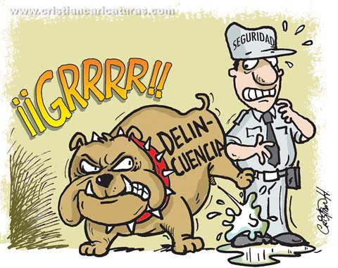 Delincuencia seguridad