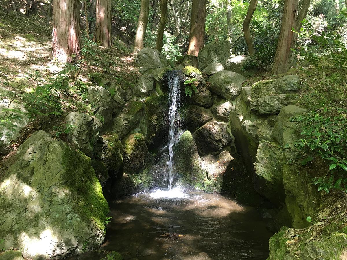 無量寿苑の滝