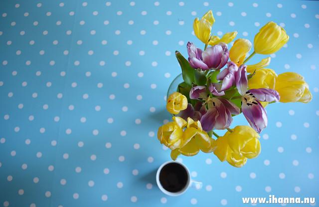 Polka dot oilcloth table + video