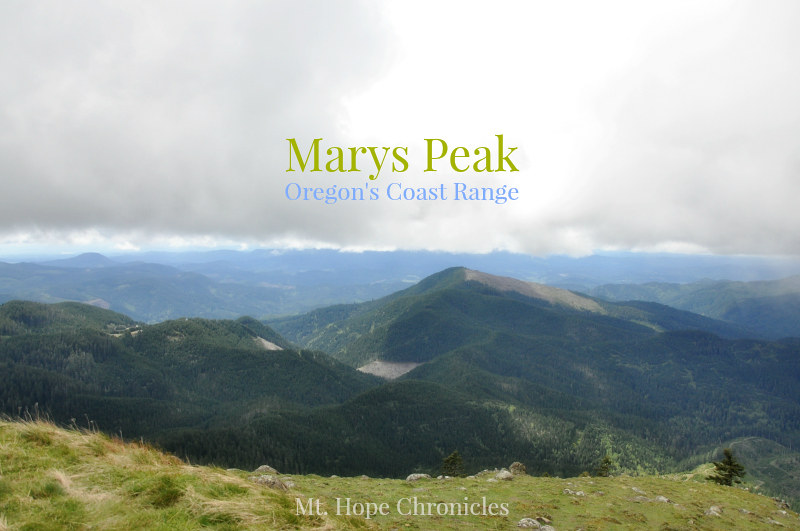 Marys Peak @ Mt. Hope Chronicles