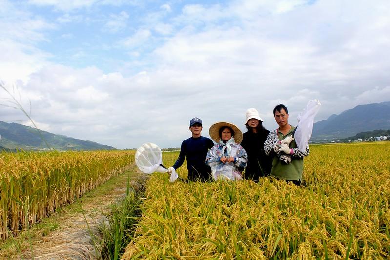 「台灣東部水稻田農業生物多樣性指標物種研發與推動」是花蓮農改場經過三年的生物多樣性調查研究後,所發展出的田間檢測指標,農民很容易便可實際運用